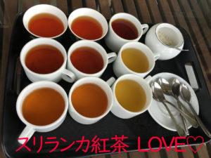 様々な種類があるスリランカ紅茶